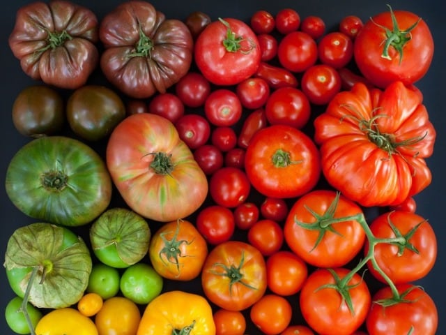 Colour-Coded and Delicious