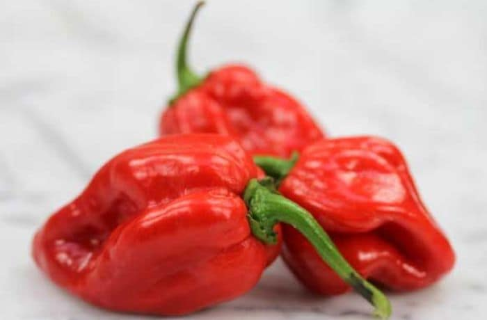 Top 10 Chillies in Order of Hotness