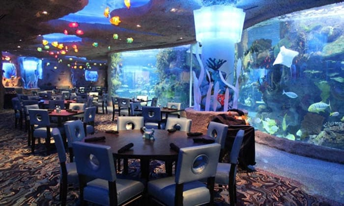 the most beautiful underwater restaurants in the world - Underwater World Restaurant