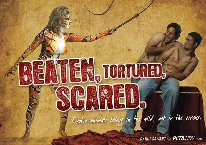 ... and has a bikini-clad Rakhi painted in tiger stripes, wielding a whip.