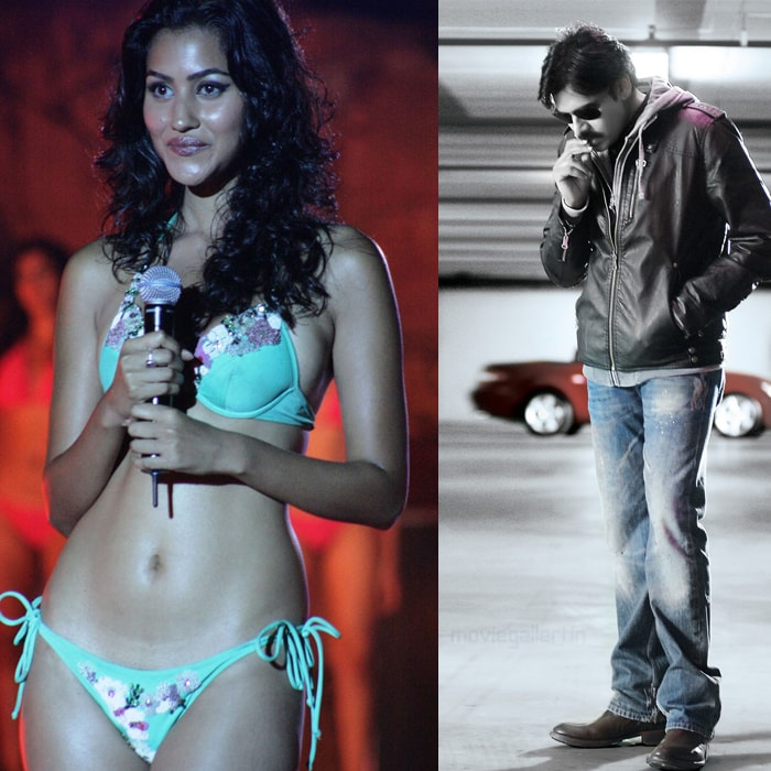 Bikini model to romance Pawan Kalyan
