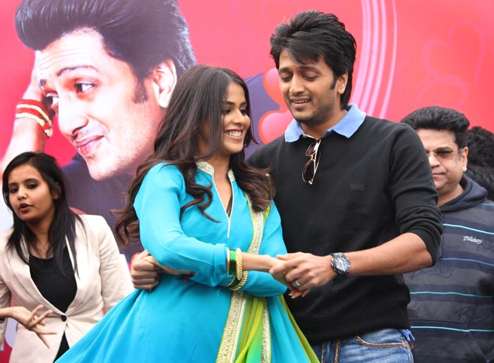 Newlyweds Riteish Genelia's working Valentine