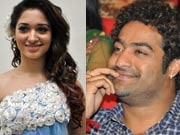 Photo : Jr. NTR, Tamanna at Oosaravelli audio launch