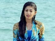 Photo : Pranitha turns beach beauty in Udhayan