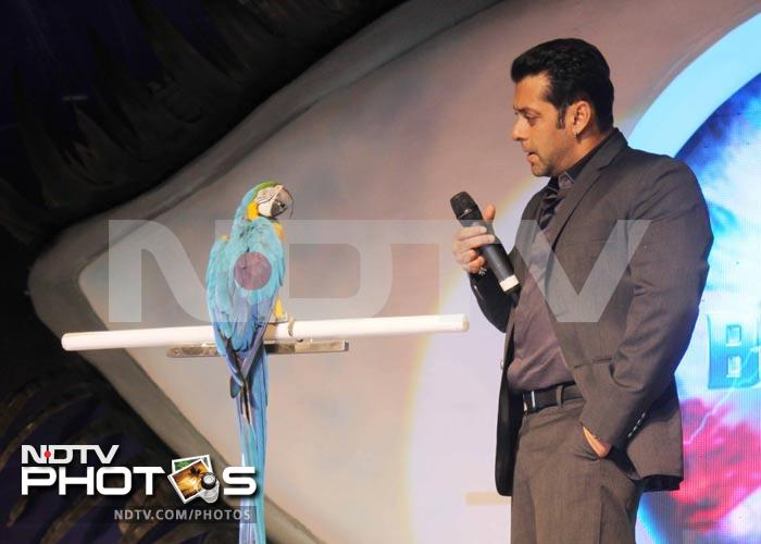A little birdie told Salman