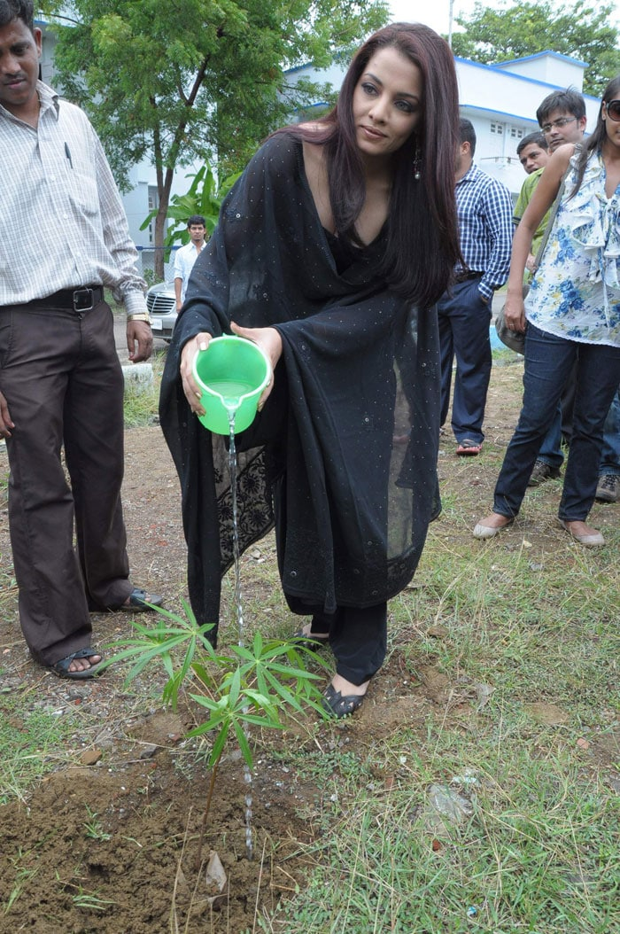 Celina Jaitley at Diya Diamonds World Environment Day
