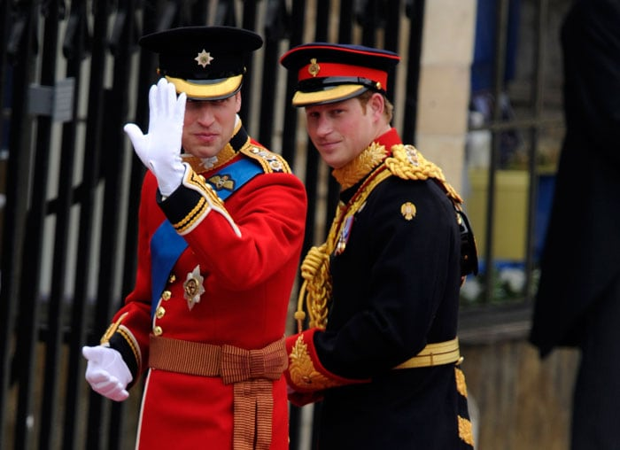 William, Harry head to Westminster