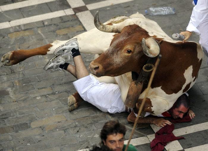 Spanish Festival Bull Running Fermin Festival Bull Run