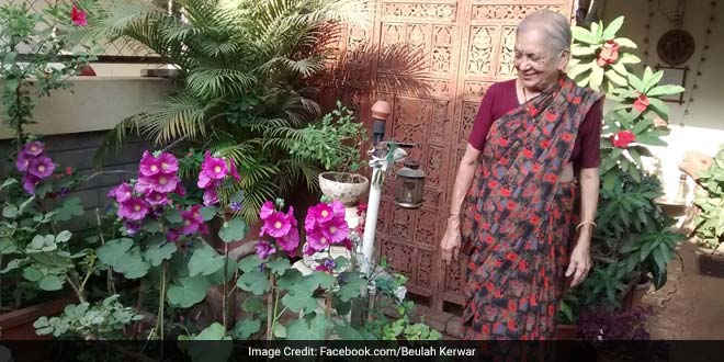 How For This 81 Year Old Garbage To Compost Is A Mission 40 years back, in 1978 when Sudha Pai moved to Pune's Model Colony she was disturbed by the piles of garbage lying onto the streets in her colony. It was then that she decided to do something about it at an individual level. To manage the waste generation, she first followed waste segregation by sorting out dry and wet waste. The next step was composting. She used the wet garbage in creating compost for her garden.  'I was startled by the way the garbage was heaped on the streets. There was little to no waste management and all of it just sat there accumulating. It made me feel a little helpless,' recounts Ms Pai.