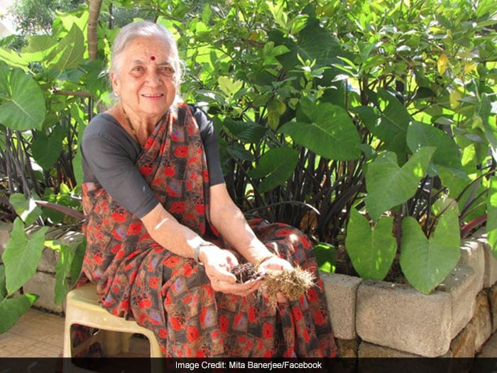 The 'Zero-Waste' Journey Ms Pai's has championed the art of 'zero-waste'. She simply collects wastes like dry leaves, wet waste from her kitchen and the waste generated by vegetable vendors to grow beautiful lush green plants in her garden. By reusing the waste she has covered every possible area of her house - from balconies to terrace.