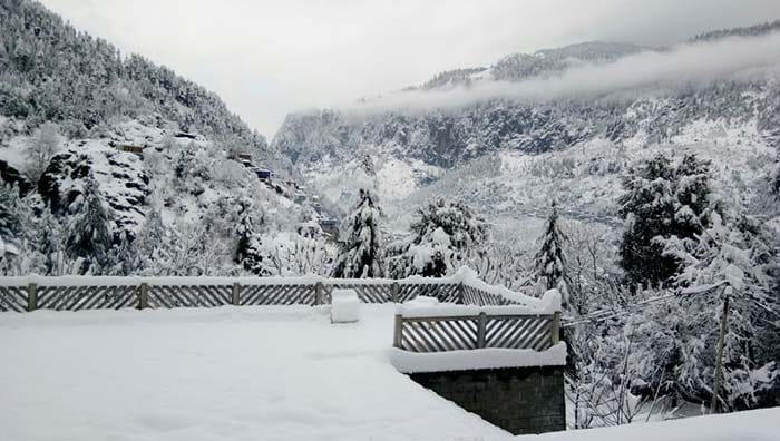 Heavy Snowfall Leaves Kashmir And Shimla Whitewashed