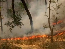 Blazing Fire Engulfs Forests In Uttarakhand