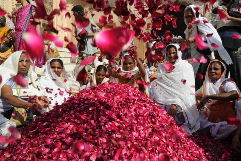 1500 kilograms of pink colour powder or 'gulal' along with flower petals were arranged by organisers for the celebrations.