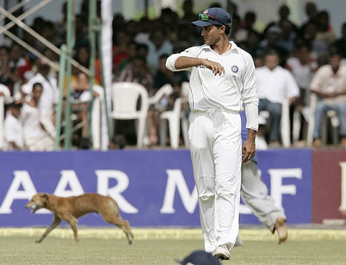 Sourav Ganguly looks on as ground staff chase a stray dog that invaded the ground during fourth day of the second Test between India and Sri Lanka in Galle on August 3, 2008.