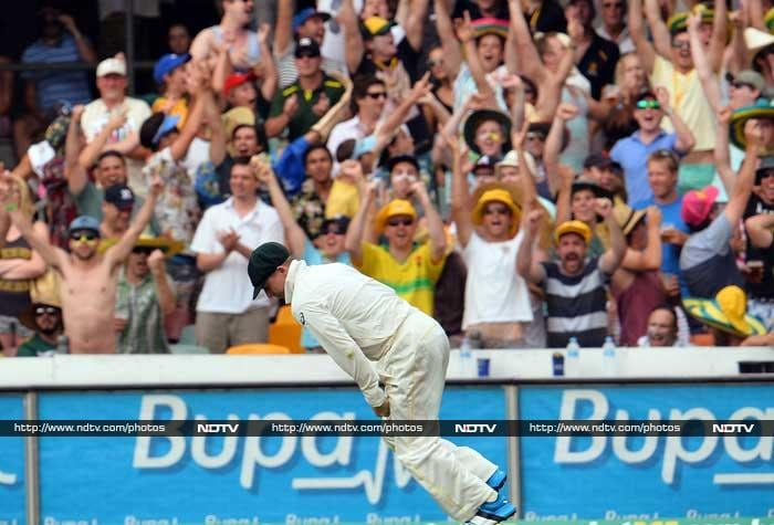 Most others though kept a close watch on the action and are seen here celebrating a wicket.