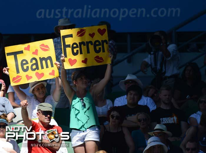 David Ferrer fans chant in unison for their hero.