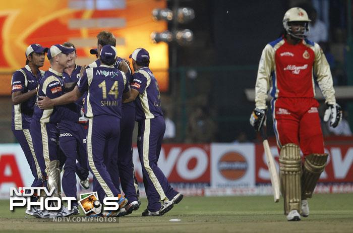 Kolkata Knight Riders players celebrate the dismissal of Chris Gayle during their Champions League Twenty20 match in Bangalore. (AP Photo)
