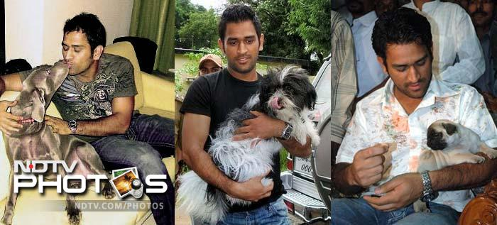 And his love is not just for inanimate objects. Dhoni is a known animal lover and has a special affection for dogs.