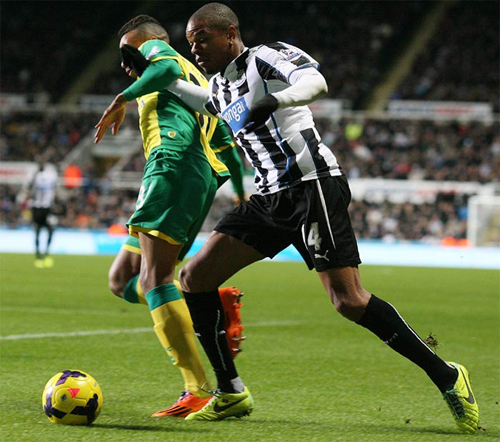 Loic Remy scored for Newcastle in just the second minute against Norwich on Saturday in a 2-1 win. Alan Pardew's side are now just a point outside the Champions League places.