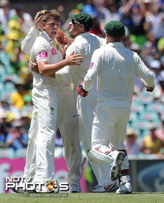 James Pattinson is congratulated by teammates after taking the prized wicket of legendary Sachin Tendulkar for 41 runs during the second Test at the Sydney Cricket Ground. (AFP Photo)