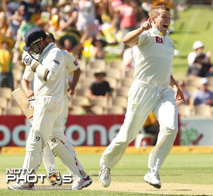 Peter Siddle celebrates bowling and catching batsman Virender Sehwag on Day 2 of the fourth Test between India and Australia in the Border-Gavaskar Trophy Series at the Adelaide Oval. (AFP Photo)
