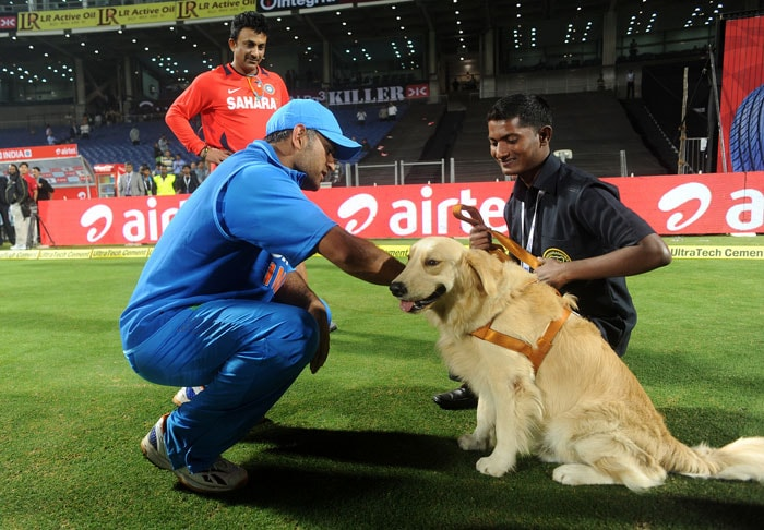 Even the security dog seemed happy and content in the captain cool's company after the match. Dhoni does bring in certain calmness and India will be looking to cash in on his attitude for further success despite the recent poor run of form. (Photo credit: BCCI)