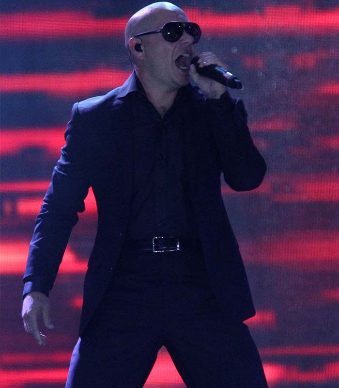 Pitbull in his element during the performance. (BCCI Image)