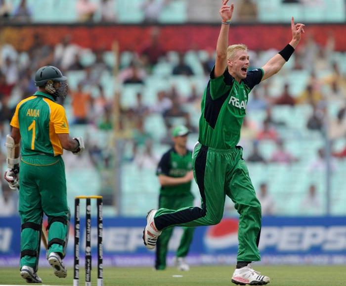 Ireland bowler Boyd Rankin celebrates the dismissal of South African batsman Hashim Amla. (AFP Photo)