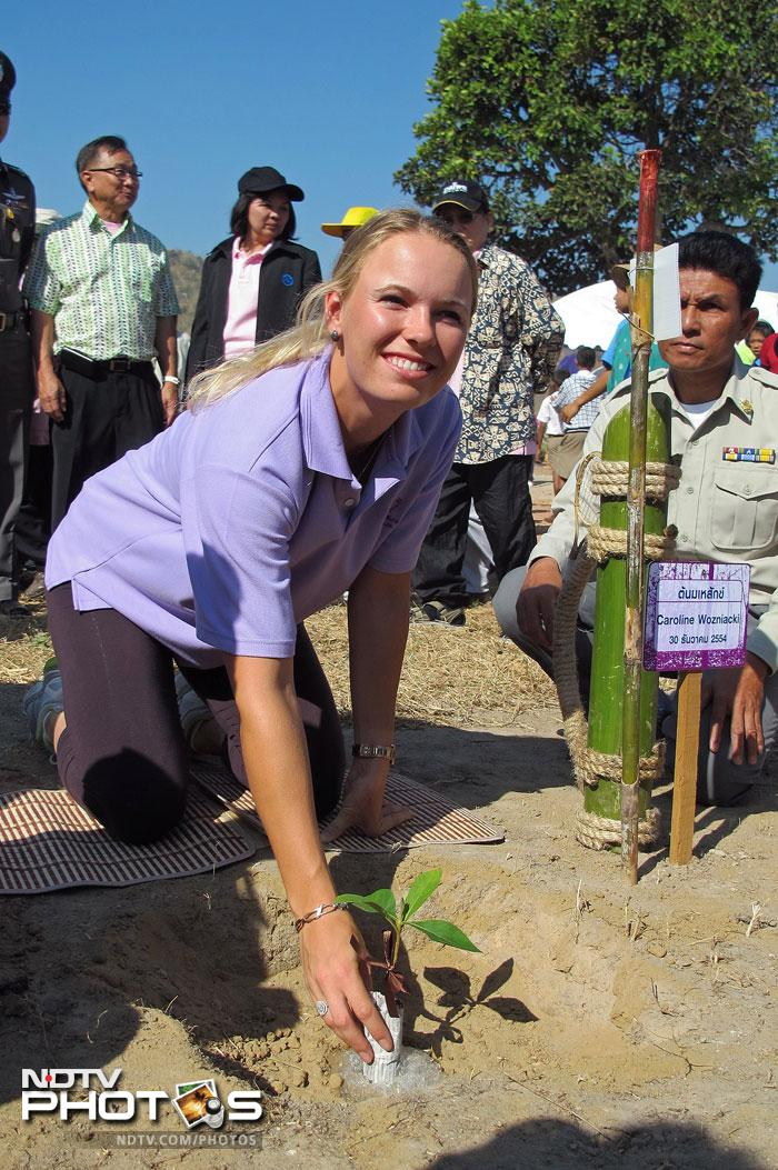 Caroline Wozniacki of Denmark taking part in a tree planting project in honour of Thai King Bhumibol Adulyadej at Hua Hin resort. (AFP PHOTO/HO/BEC Tero)