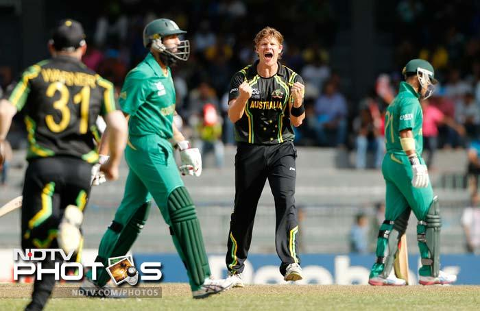 Shane Watson can't be kept out of the action for too long, as he picked up Hashim Amla.