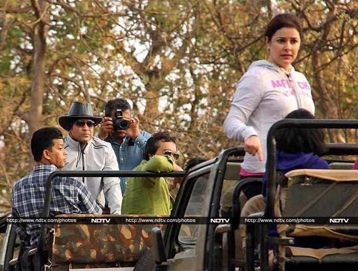 Sachin and wife Anjali are seen in different jeeps as they enjoy the lion safari in the Gir forest in Gujarat.