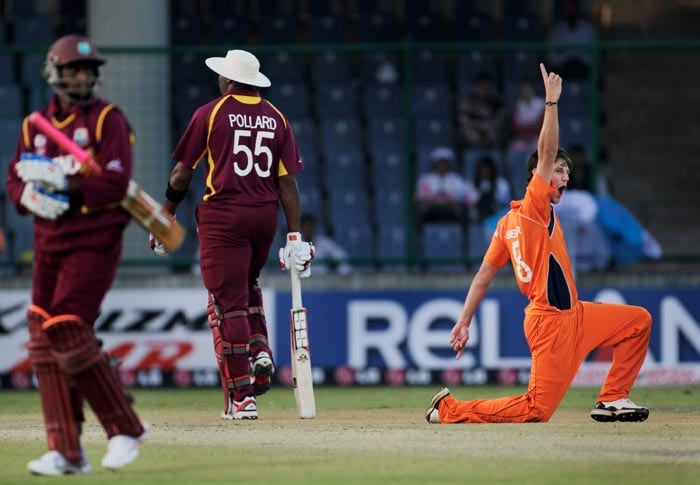 Pieter Seelaar celebrates the wicket of Shivnarine Chanderpaul during the 2011 ICC World Cup group B match between Netherlands and West Indies at Feroz Shah Kotla stadium in New Delhi. (Getty Images)