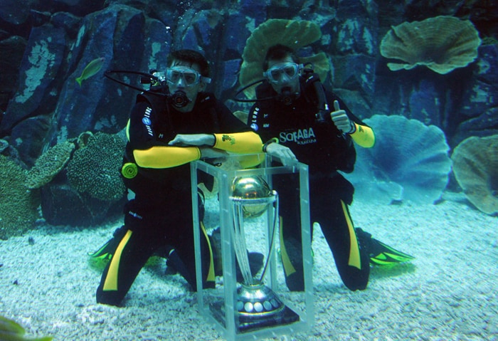 The ICC World Cup trophy was displayed by South African players Morne Morkel and Dale Steyn in the Dubai aquarium as the 100-day countdown to the event began on November 9. (AFP Photo)