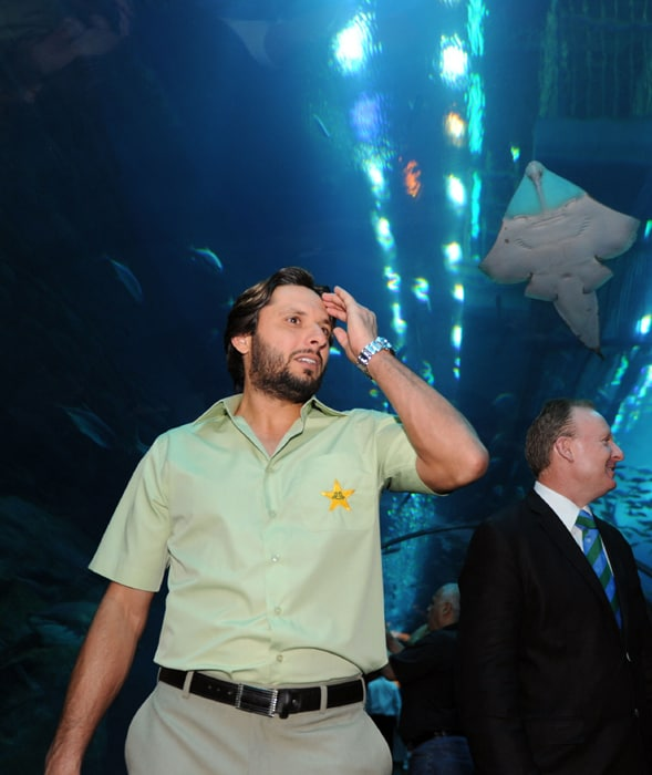 Pakistani one-day cricket team captain Shahid Afridi visits the Dubai Aquarium, as the team attended a ceremony to mark the 100 days countdown to the ICC World Cup, to be hosted by India, Sri Lanka and Bangladesh. (AFP PHOTO)