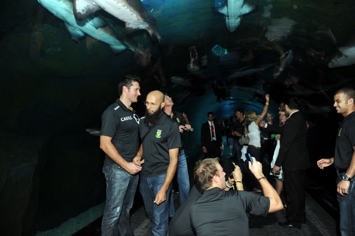 South African cricket team players visit the Dubai Aquarium, as the team attended a ceremony to mark the 100 days countdown to the ICC World Cup, to be hosted by India, Sri Lanka and Bangladesh. (AFP PHOTO)