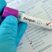 Doctor's Advice: 6 Natural Remedies to Treat Dengue