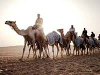 6 Fun Activities to Try in Dubai