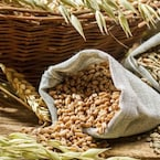 High-Fiber Diet: Whole Grains, Fruits and Veggies May Prevent Diabetes Risk