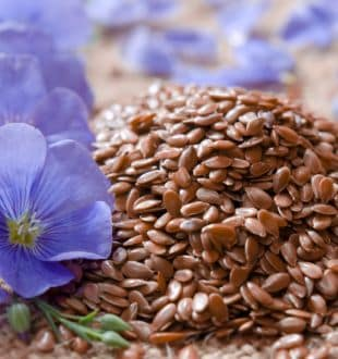 Why and How to Eat Flaxseeds? Health Benefits, Tips, Recipes and More