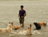 30 dogs + one Paras + a giant water body = A good recipe for some fun