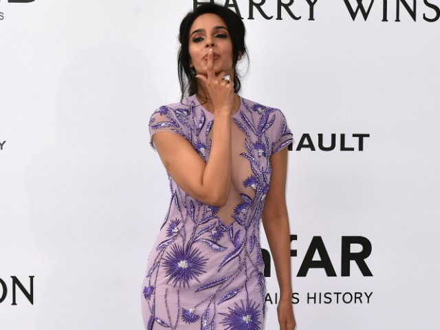 Mallika Sherawat Steals the Show at the amfAR Gala