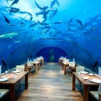 In Pictures: The World's Most Expensive Restaurants