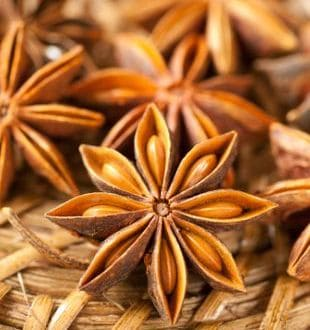 The Story of Star Anise: From Garam Masala to Chinese Five Spice Mix
