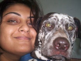 This week's winner of the Tales & Tails contest is Gunjan Pande from Goa.    She writes to us about her brave 6 year old dalmatian, Zia. Gunjan says: One night when Zia was only one and a half years old, I was woken up in the middle of the night by strange sounds coming from our backyard. I picked up a bamboo stick and went to see what was happening. As soon as I reached i saw Zia tugging at a man's ankle, and barking ferociously even while the man was throwing stones at her. Soon a crowd gathered and we caught hold of the person only to discover that he was a thief trying to climb the water pipe. The police was immediately called in and soon Zia became the resident hero of our colony and all our hearts.