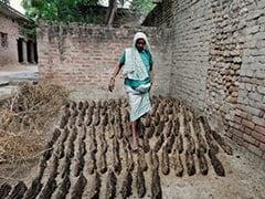 Caught In Bondage, India's Farm Labourers Suffer In Silence