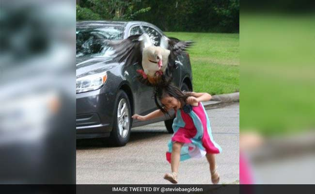 Going Viral: Pics of Little Girl vs Angry Bird Makes Twitter ROFL