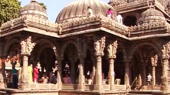 Video : Ahmedabad's tree of life