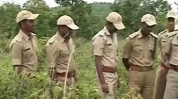 Video : Special force to tackle tiger poaching menace in Karnataka