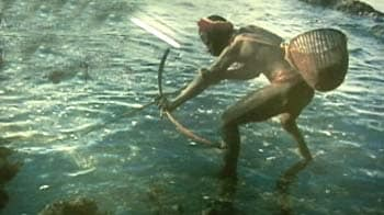 Video : At the crossroads: The Andaman Jarawa