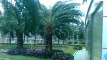 Video : Gusty winds in Chennai as Cyclone Nilam approaches